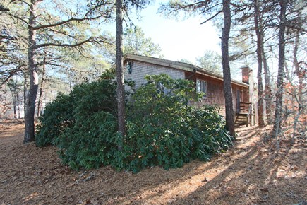 Truro Cape Cod vacation rental - 4 Bedroom, 3 bath home Nestled Amongst the Trees in Truro.