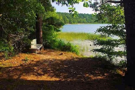 Wellfleet Cape Cod vacation rental - Walk down to this landing where you can swim or boat.