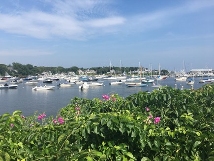 Harwich Port  Cape Cod vacation rental - Picturesque Wychmere Harbor just a 3/10 mile walk away