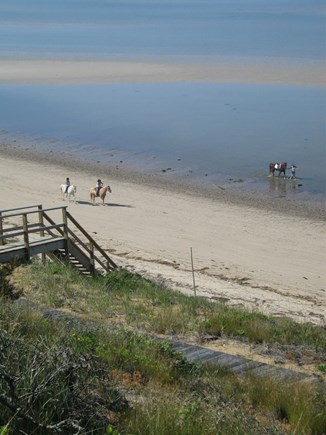 North Truro Cape Cod vacation rental - Horseback riders at low tide.