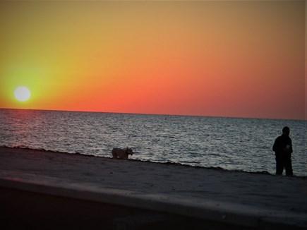 West Dennis Cape Cod vacation rental - Perfect sunrises
