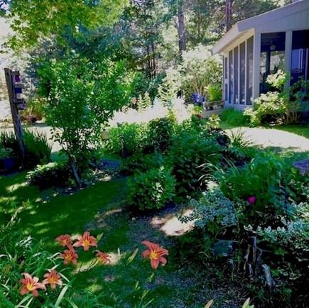 Orleans Cape Cod vacation rental - Beautiful flower gardens