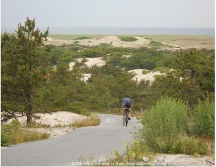 Truro Cape Cod vacation rental - The Provincelands bike trails--never boring...