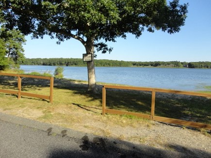 West Yarmouth Cape Cod vacation rental - Swan Lake