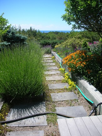 South Truro Cape Cod vacation rental - Garden path
