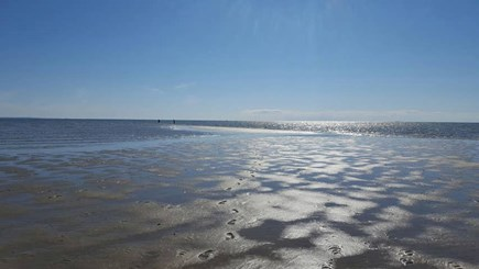 Eastham Cape Cod vacation rental - Beautiful Sunken Meadow Beach at low tide - just 4/10 mile away!