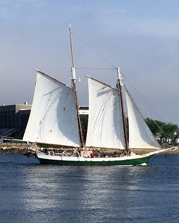 Bourne, Gray Gables Cape Cod vacation rental - A sample of the ships sailing the canal