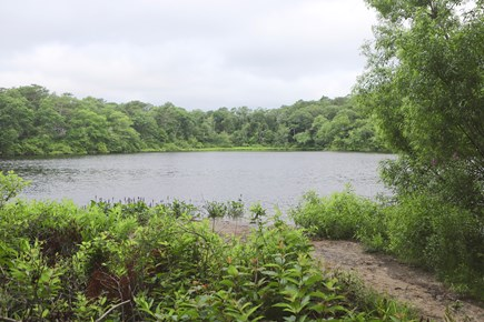 Plymouth MA vacation rental - Rabbit Pond directly in the back of house, swim, fish, kayak
