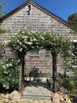 Eastham Cape Cod vacation rental - Rose arbor at Side entrance.