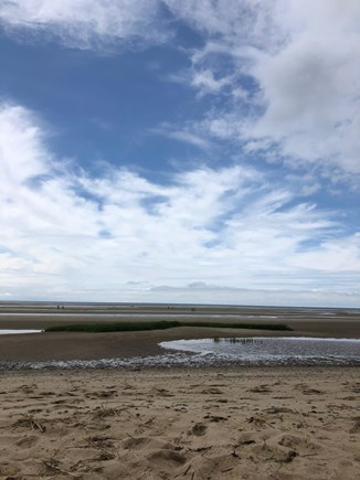 Eastham Cape Cod vacation rental - First Encounter at Low Tide