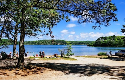 Brewster Cape Cod vacation rental - Nickerson State Park - Cliff Pond
