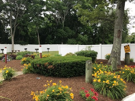 West Yarmouth Cape Cod vacation rental - Our Beautiful Landscaping