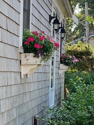 Chatham Cape Cod vacation rental - Flower boxes