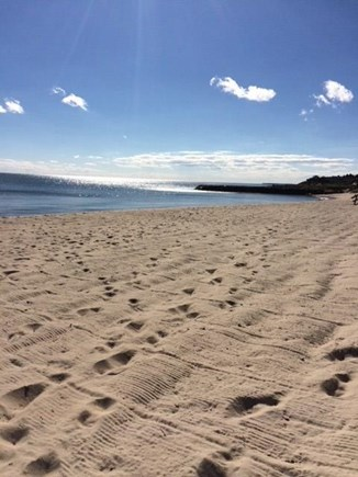 Dennis Port Cape Cod vacation rental - Morning beach at Dennis Seashores