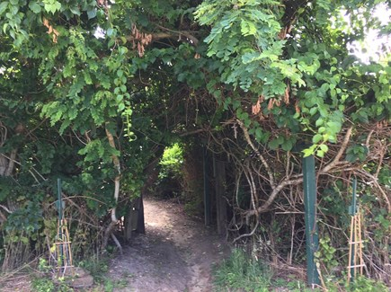 Orleans Cape Cod vacation rental - Private Beach Path entrance