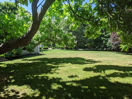 Chatham Cape Cod vacation rental - Spacious Yard, Great for Lawn Games
