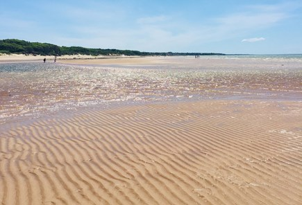 Brewster Cape Cod vacation rental - Brewster flats – Linnell Landing beach at low tide