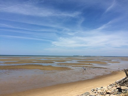 Eastham Cape Cod vacation rental - Low tide on the Bay