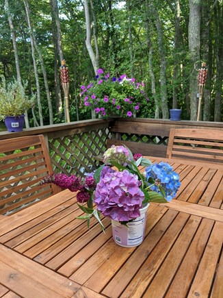 Eastham Cape Cod vacation rental - New Acaia 6-seat dining table on shady, private upper deck