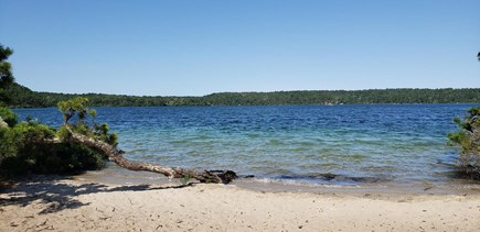 Brewster Cape Cod vacation rental - Cliff Pond in Nickerson State Park. 1 of many lakes in the area