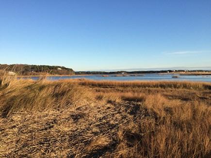 Wellfleet Cape Cod vacation rental - Fox Hollow and Marsh land.