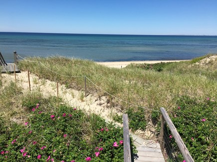 Truro Cape Cod vacation rental - Steps from the deck to the beach. Smell the roses.