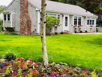 West Yarmouth Cape Cod vacation rental - View of home & yard during mid-summer bloom
