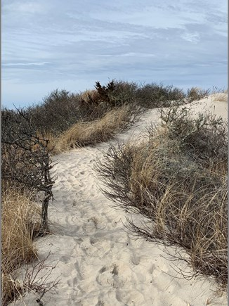 Orleans Cape Cod vacation rental - Path to private beach 4/10 mi.