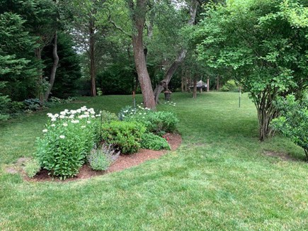 Orleans Cape Cod vacation rental - View of landscaped yard with hammock in background for lazy days