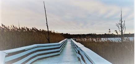 Yarmouth Cape Cod vacation rental - 2/10 miles to beautiful Swan Pond boardwalk.