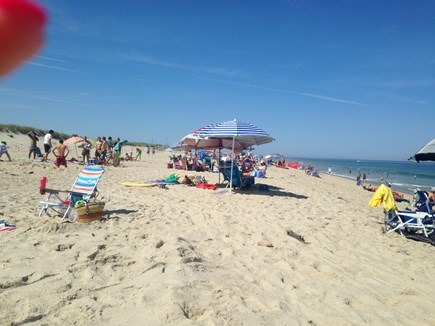 East Orleans Cape Cod vacation rental - Isn't this why you came to Cape Cod?
