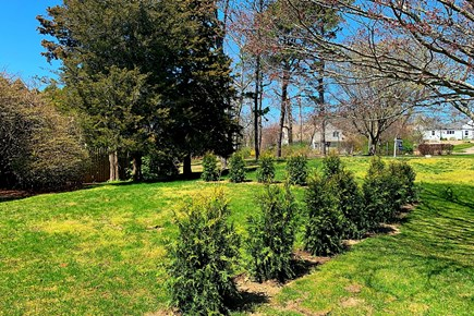 East Dennis Cape Cod vacation rental - Side Yard. Future Location of 1 of 2 Firepits.