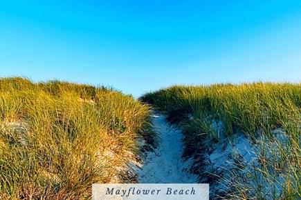 East Dennis Cape Cod vacation rental - Sand Path to Mayflower Beach.