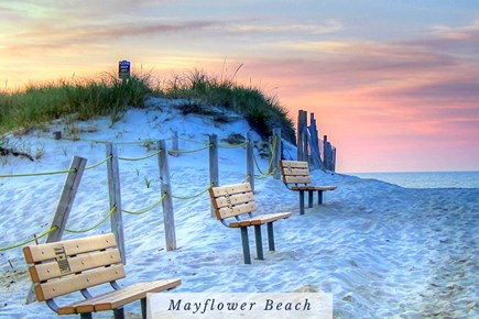 East Dennis Cape Cod vacation rental - Benches at Mayflower Beach.