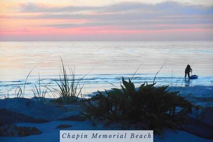 East Dennis Cape Cod vacation rental - Clamming at Chapin Memorial Beach.