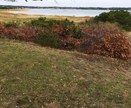 Wellfleet Cape Cod vacation rental - Chipman's Cove view