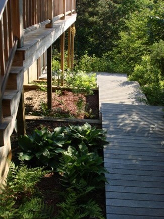 Wellfleet Cape Cod vacation rental - Walkway on side of home