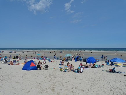 Brewster Cape Cod vacation rental - Mayflower Beach 6 miles from house.