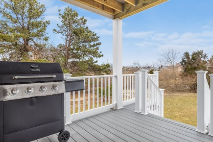 Yarmouth Cape Cod vacation rental - Grill