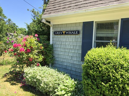 Cotuit- near Loop Beach Cape Cod vacation rental - Front of House-charming, walk to two beaches, outdoor hot shower