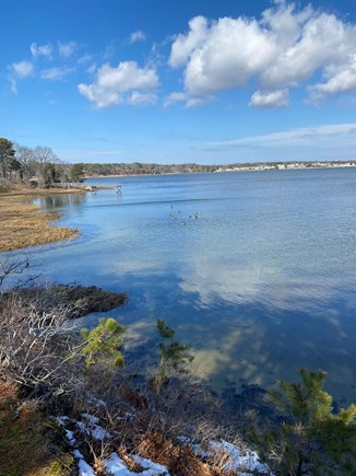 Bass River, West Dennis Cape Cod vacation rental - View from the bluff