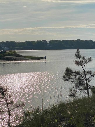 Bass River, West Dennis Cape Cod vacation rental - Early morning fishing