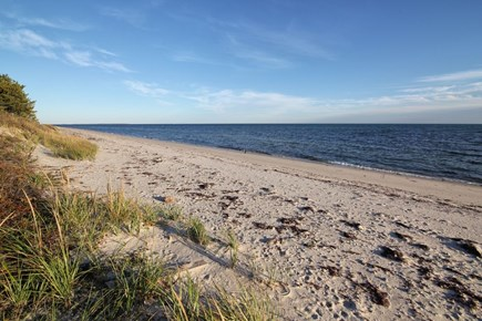 Osterville Cape Cod vacation rental - Dowses Beach