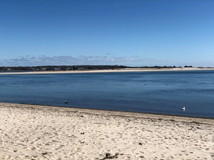Cotuit Cape Cod vacation rental - Loop Beach....one of many nearby beaches (permit included!)