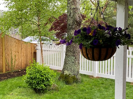 South Yarmouth Cape Cod vacation rental - Fully fenced in yard