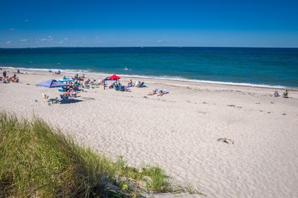 East Sandwich Cape Cod vacation rental - Gorgeous day at the beach!
