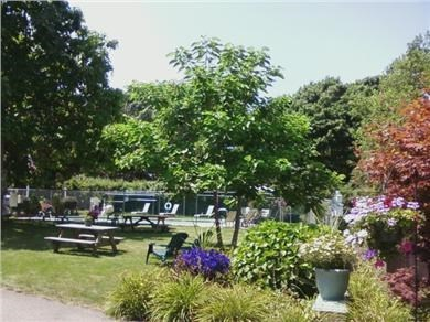Harwich, Wyndemere Condominiums Cape Cod vacation rental - View of the Pool and Picnic area