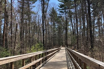 Harwich, Wyndemere Condominiums Cape Cod vacation rental - Harwich Trails in Autumn are spectacular!
