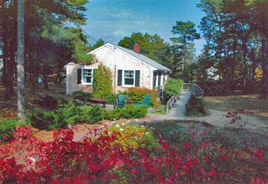 South Wellfleet Cape Cod vacation rental - View from driveway of back patio and deck