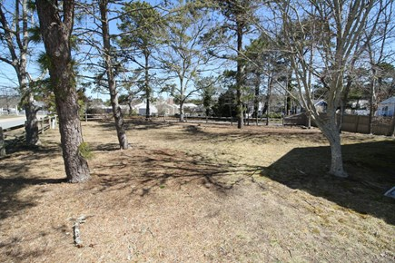 Dennis Port Cape Cod vacation rental - Spacious side yard